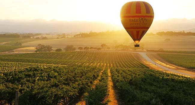 Barossa Valley (Adelaide)