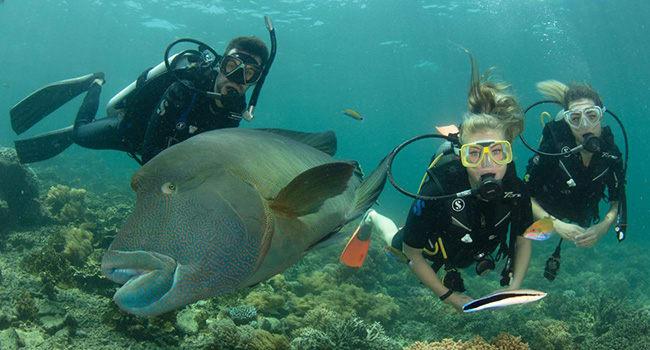 Introductory scuba dive