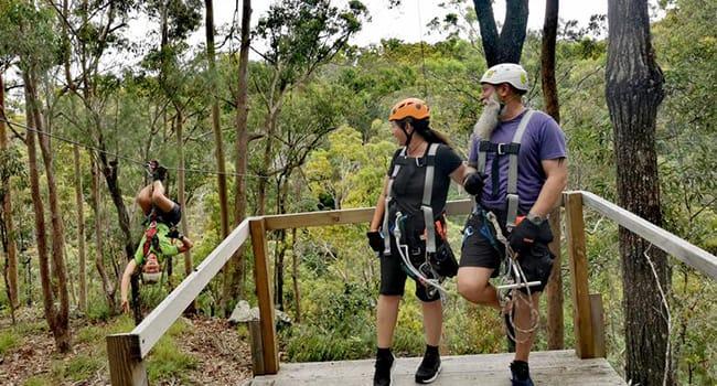 Guided Zipline Tour - Tamborine Mountain, Gold Coast