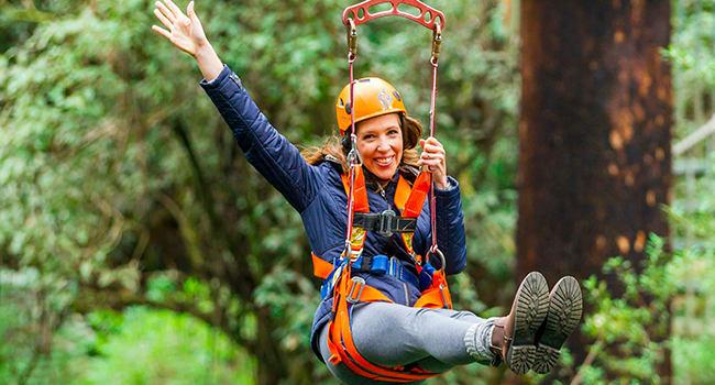 Zip line adventure in The Otway National Park