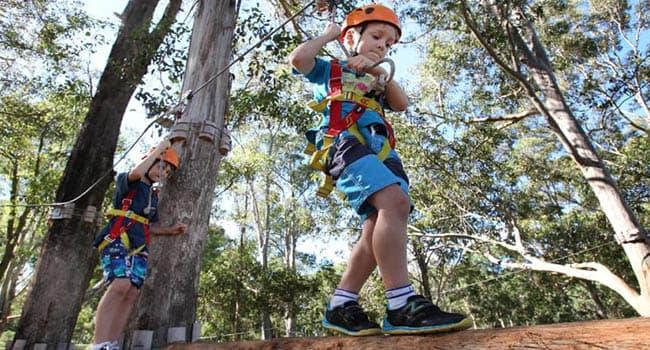 Tree tops adventure, Coffs Harbour