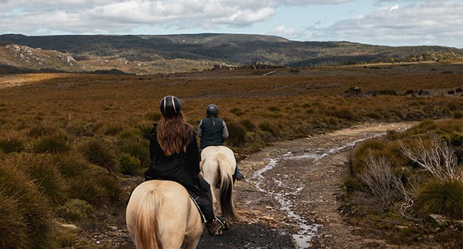 Horse trail ride, Cradle Mountain
