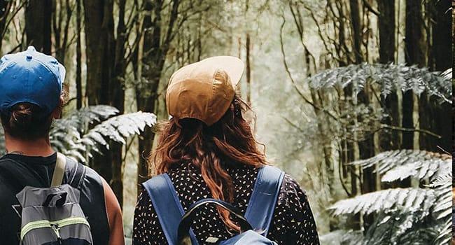 Hiking and bushwalking