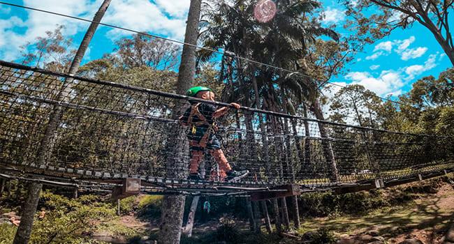 Flying Fox & Tree Adventures