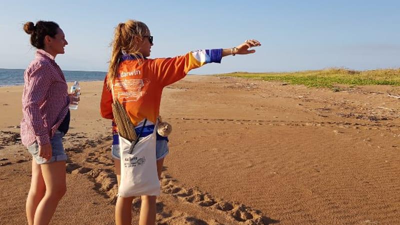 Sunset Turtle Nesting Island Tour & Cruise, 8 Hours - Departs Darwin