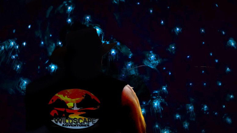 Night 4WD & Glow Worm Adventure - Blue Mountains