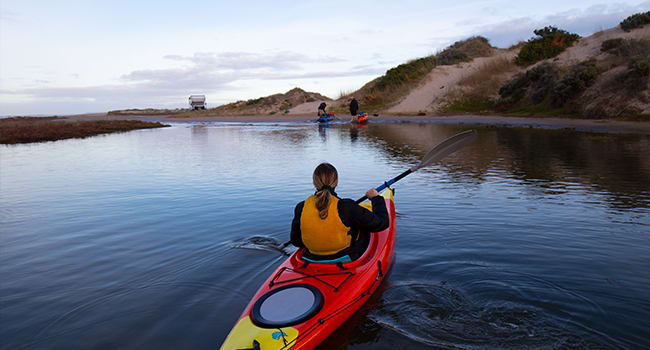 Day 3: sunset kayaking, Hindmarsh Island