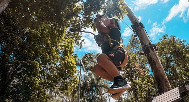 Flying foxes and high ropes