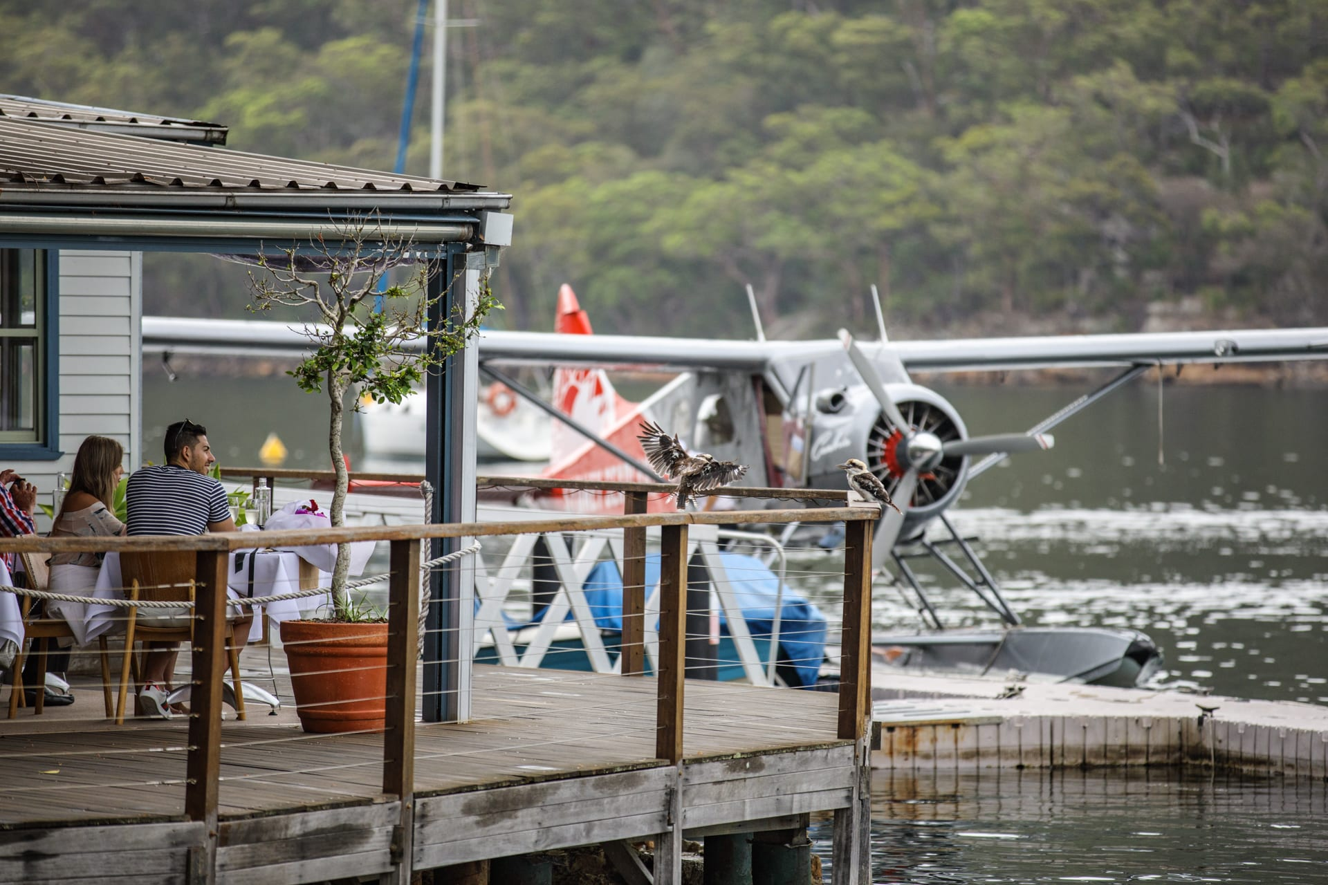 Sydney Seaplanes Fly & Dine for Two - Scenic Flight With Lunch At Cottage Point Inn
