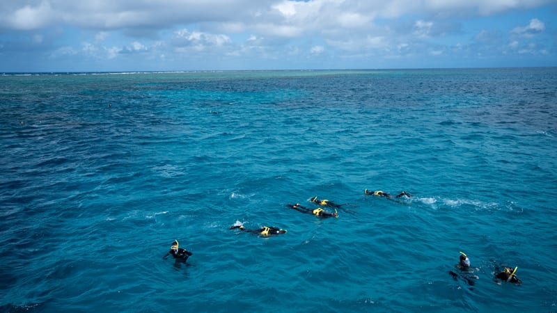 Great Barrier Reef Full Day Snorkelling Cruise - Cairns