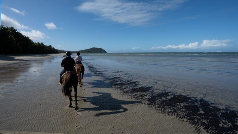 Beach Horse Riding Tour, Afternoon - Cape Tribulation