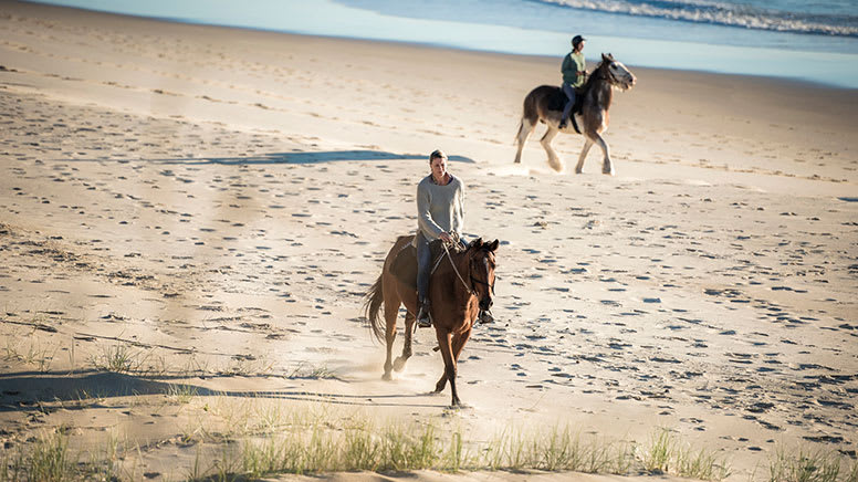 Forest to Beach Horse Trail Ride, 2 Hours - Byron Bay