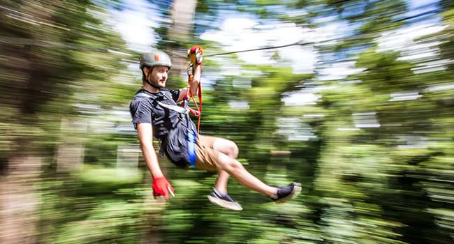 Under $100- High ropes adventure, Sunshine Coast