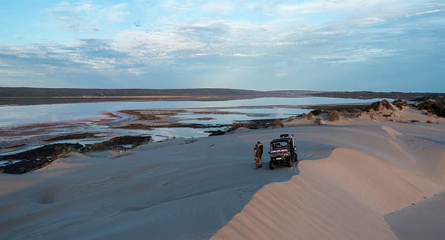 Under $100- Pink lake tour, Hutt Lagoon