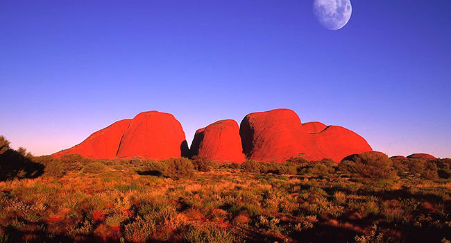 Under $100- Uluru–Kata Tjuta National Park Tour