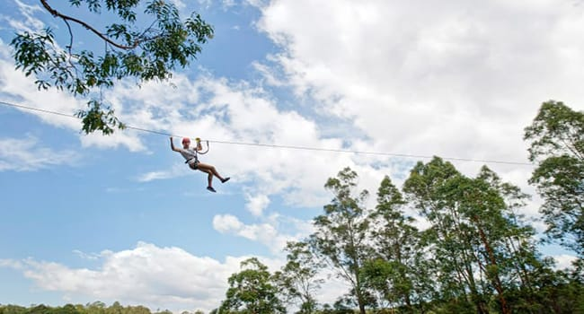 What to do in wider NSW