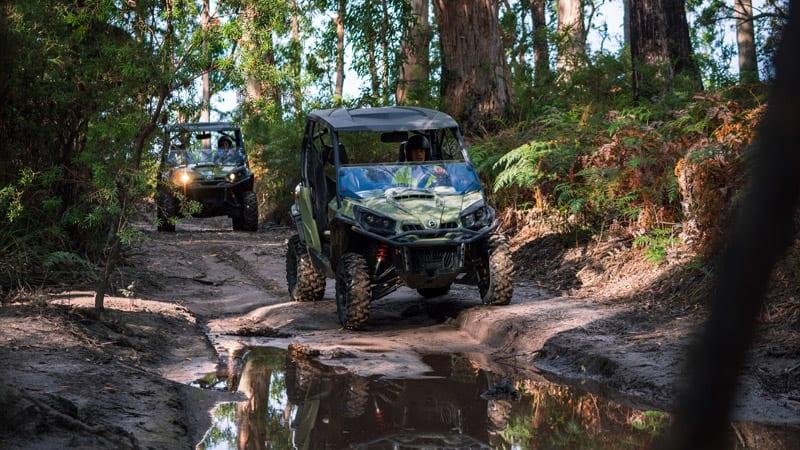 4x4 ATV Adventure, 2 Hours - Tasman National Park
