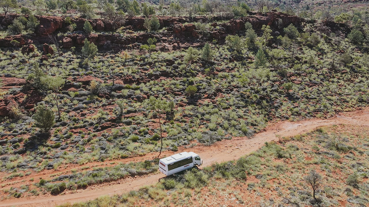 The Adventure Series: palm Valley 4WD tour