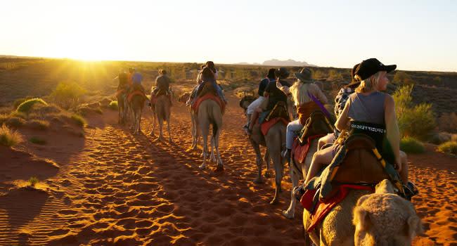 Under $150 - Sunset camel tour, Uluru