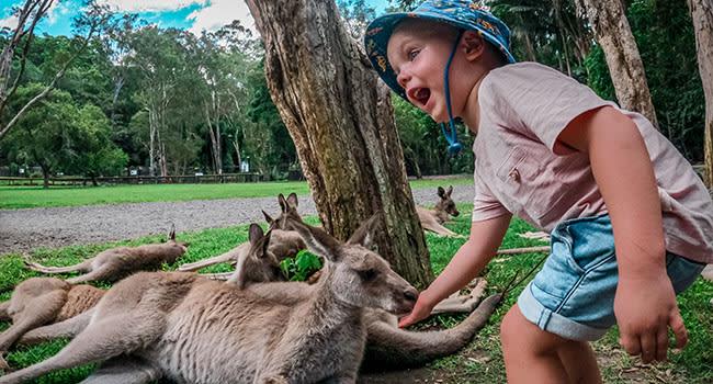 Under $100 - Currumbin Wildlife Sanctuary, the Gold Coast