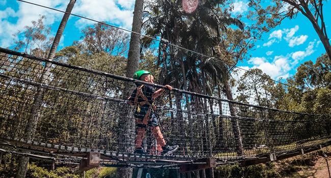 Under $50 - Tiny tots rope adventure, Mt Tamborine