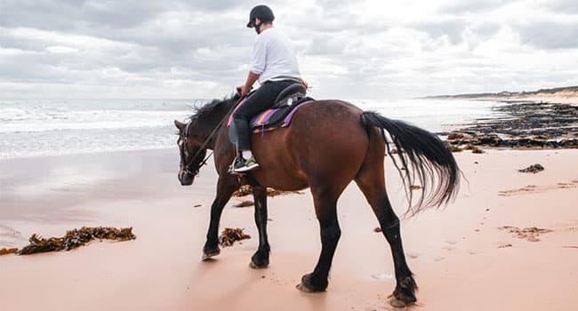 Horse riding, Mornington Peninsula
