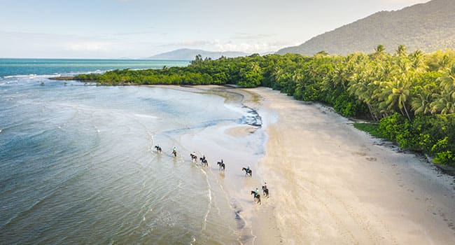 Horse riding, Cape Tribulation