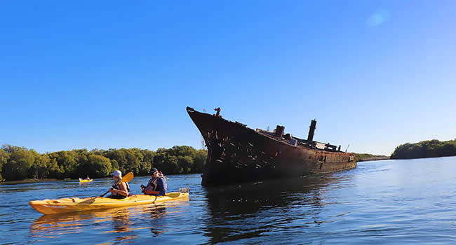 Dolphin sanctuary kayaking, Adelaide