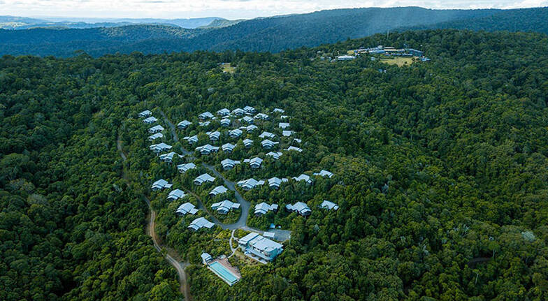 Private Helicopter Flight with O'Reilly's Rainforest Stop - Gold Coast - For up to 3