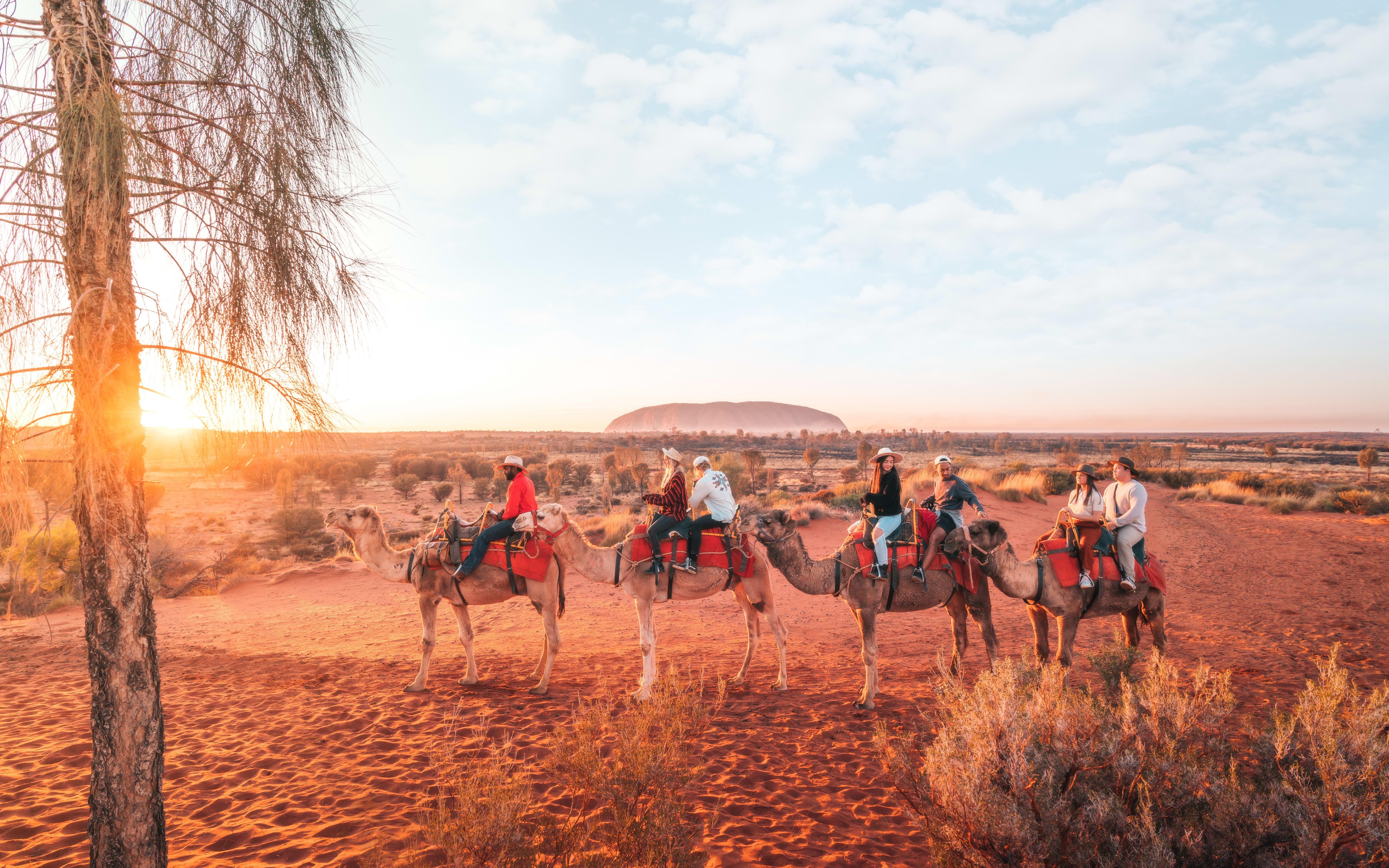 Sunset Camel Ride, 1 Hour - Uluru & Kata-Tjuta