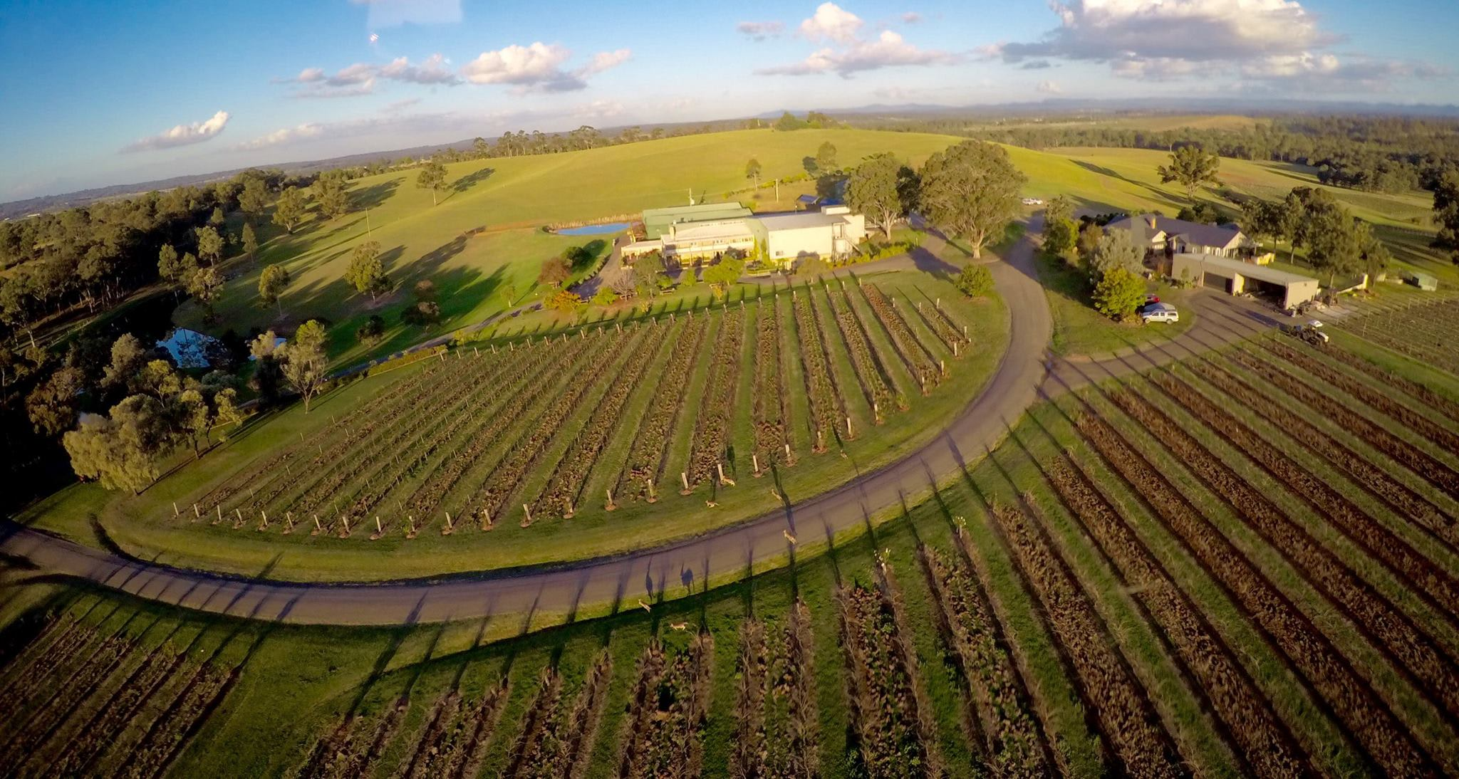 Scenic Helicopter Flight & Lunch - Hunter Valley - For 2