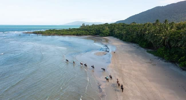 Beach Horse Riding Tour, Cape Tribulation