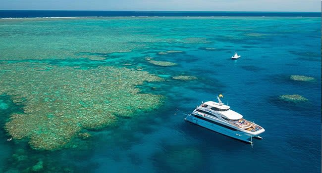Great Barrier Reef Snorkelling Cruise, Cairns