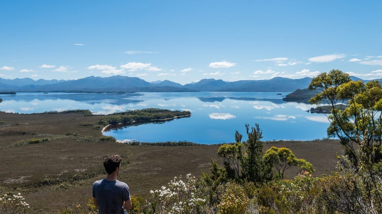 Southwest National Park Full Day Tour with Flights & Cruise - Hobart