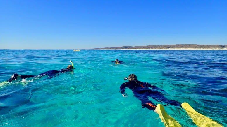 Ningaloo Reef Kayak & Snorkel Tour, 3.5 Hours  - Exmouth