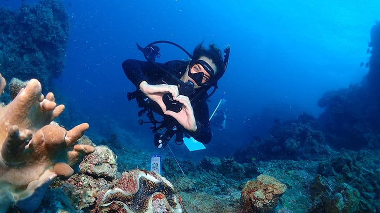Snorkel and Scuba Dive Adventure, 2 Days - Great Barrier Reef