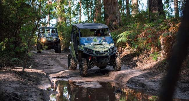 4x4 ATV Adventure, Tasmania
