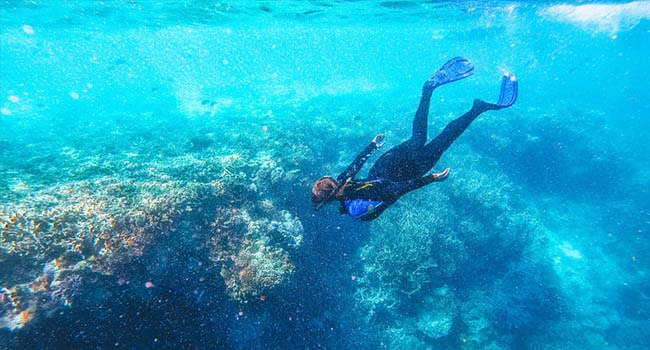 Great Barrier Reef Cruise with Snorkeling, Whitsundays