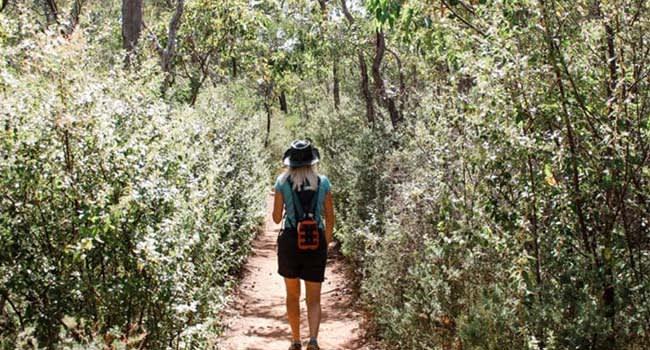 Kitty's Gorge Darling Ranges Hike
