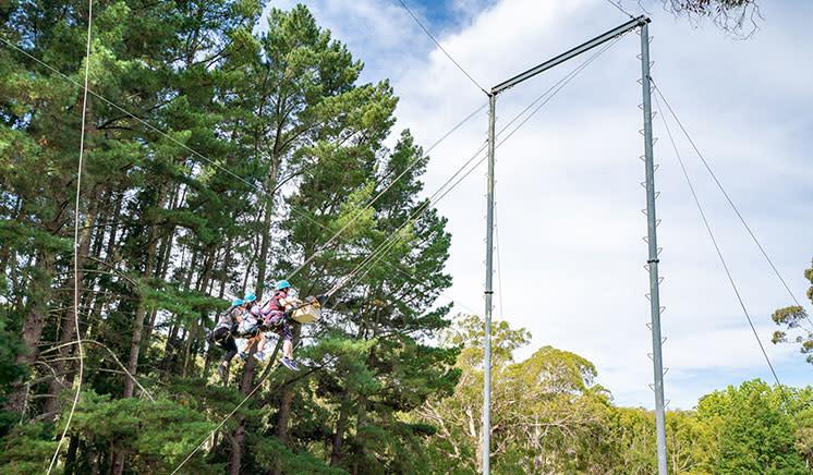 Rock Climbing, Abseiling, Zipline & Mega Swing Adventure - Adelaide