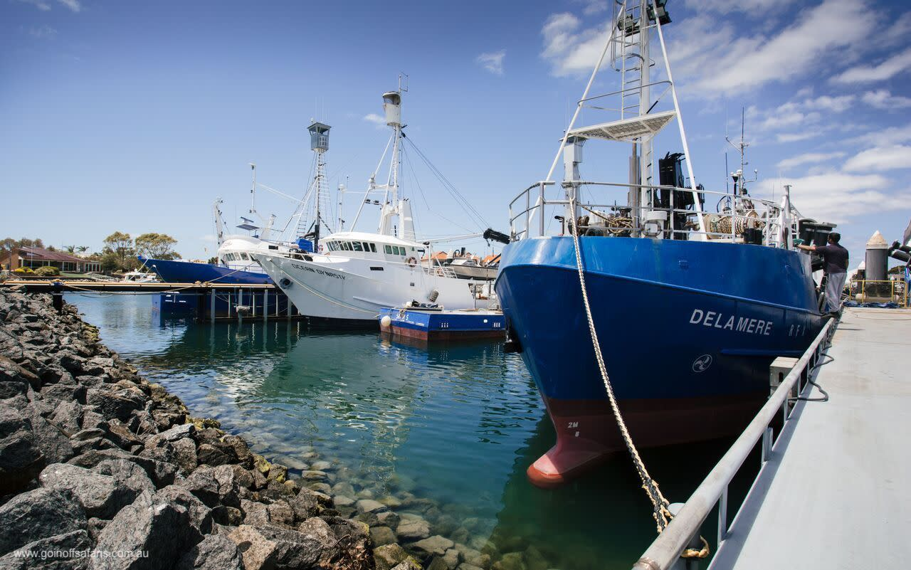 Port Lincoln Tour with Great White Shark Cage Dive, 2 Nights