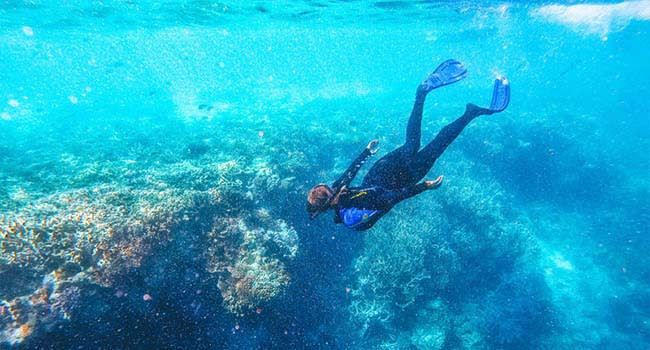 @TheSandyVan – Great Barrier Reef Cruise with Snorkelling, Whitsundays