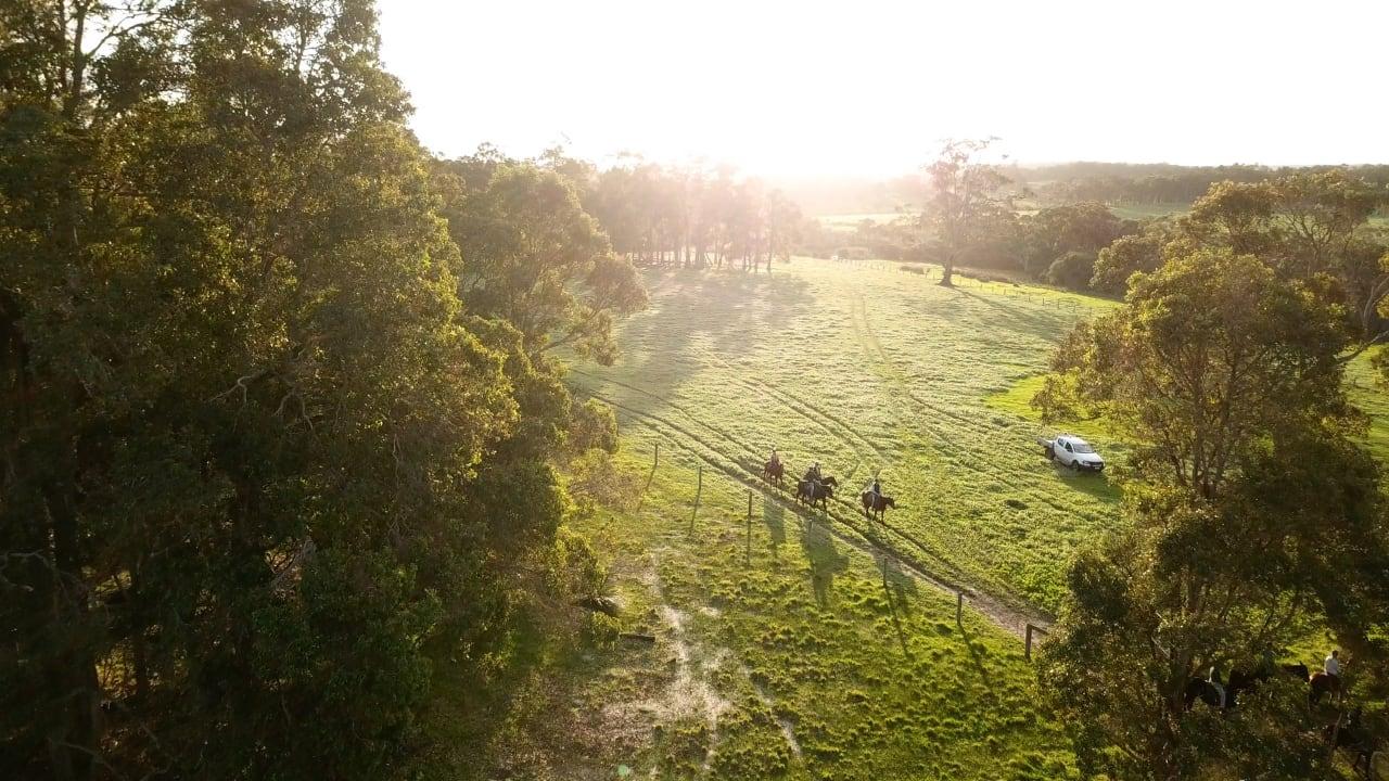 Experience 4: Horse Riding Adventure – Sydney