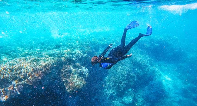 Swap laps at the pool for snorkelling