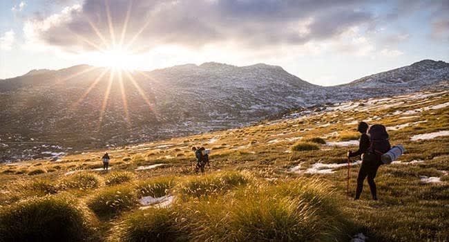 Mt Kosciuszko Summit, Sydney or Canberra