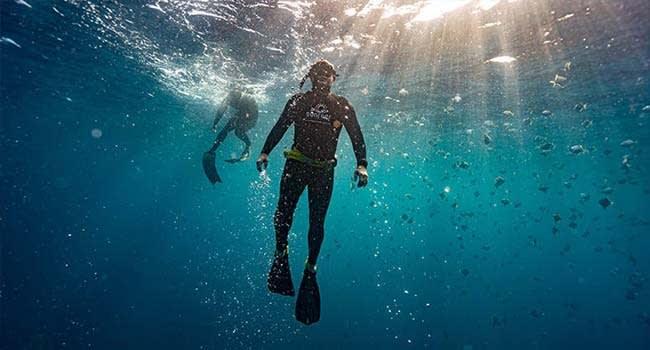 Full Freediving Course, Sunshine Coast