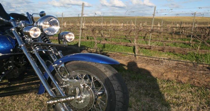 Hunter Valley Trike Tour For 2, Hunter Valley