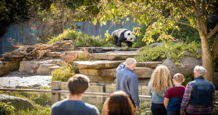 Adelaide Zoo General Admission Entry - Adelaide