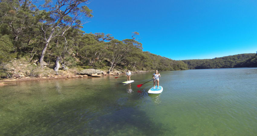 Stand Up Paddle Boarding Lesson and Safari - Sydney