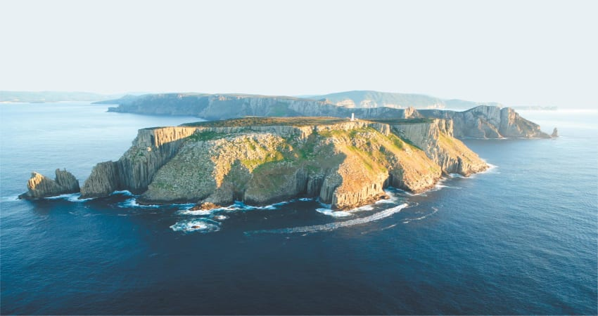 Tasman Island Day Trip Cruise with Tasmanian Devil Park - Departs Hobart
